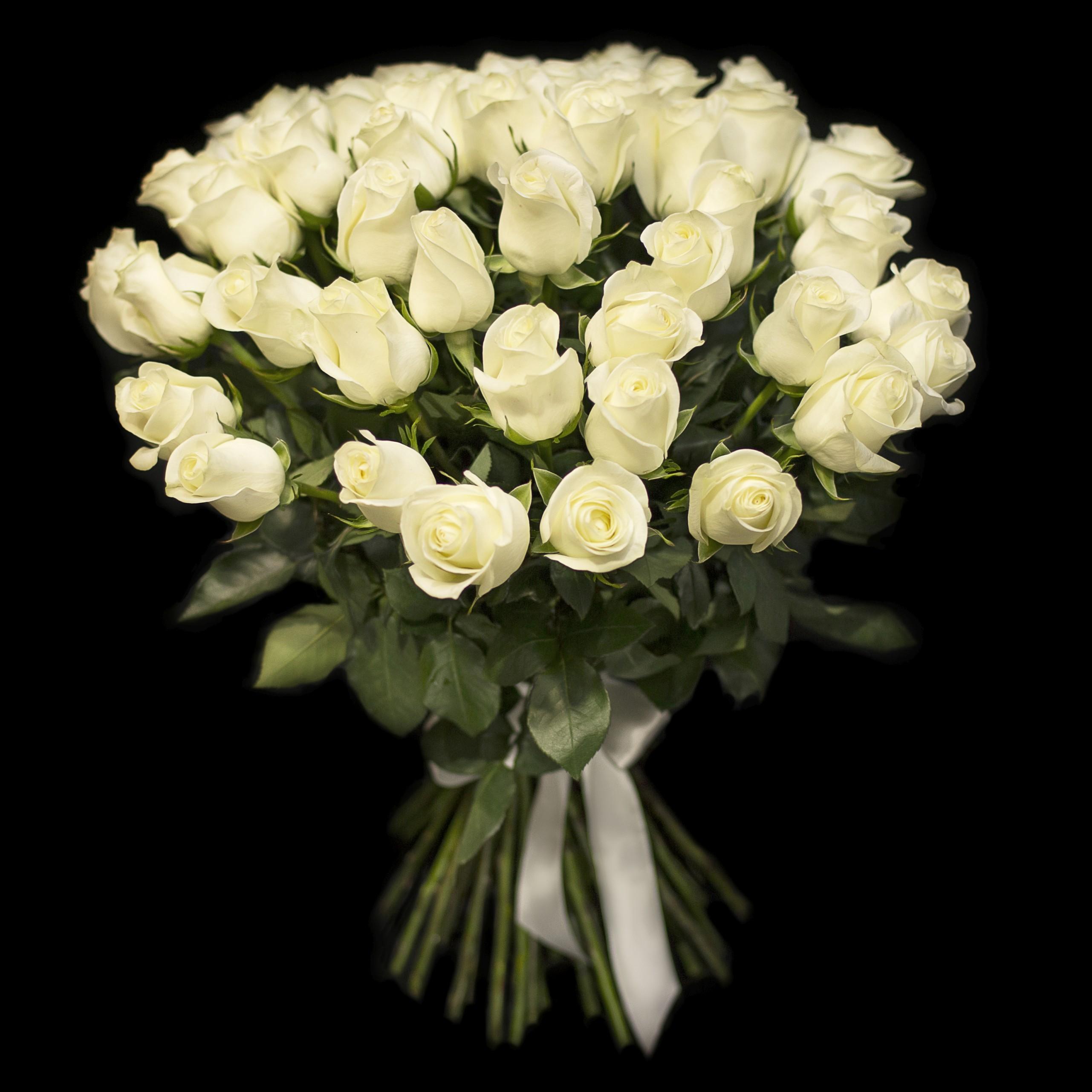 Картинки белых роз букет