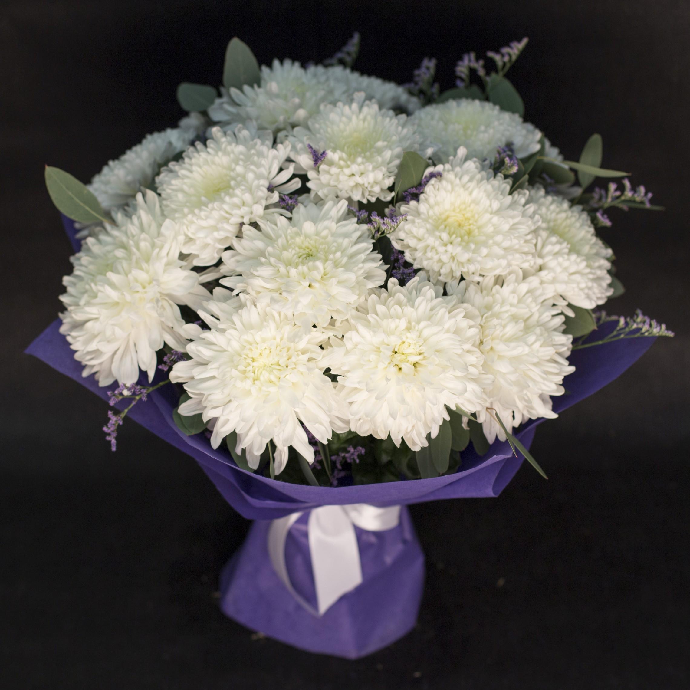 Белые хризантемы на фото и открытках, картинки которые можно
